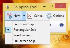 how to take a windows 8 screenshot