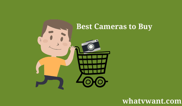 best cameras to buy
