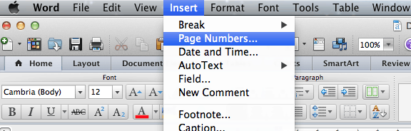 insertmenu-how-to-add-number-format-to-word-document-on-mac