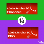 Adobe acrobat DC standard Vs PRO (Differences & Similarities)